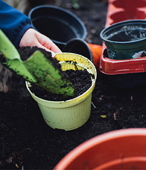 Fresh dirt is used to garden